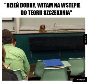 Dziwny profesor