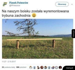 Polskie orliki