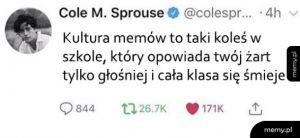 Kultura memów