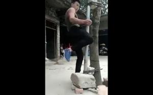 Prawie jak Bruce Lee