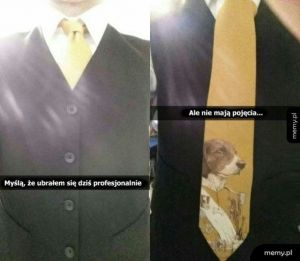 Profesjonalny ubiór