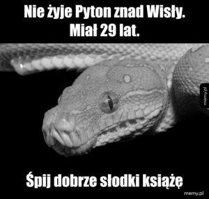 RIP pyton