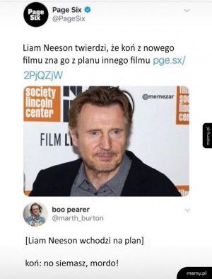 Liam Neeson jest naprawdę znany