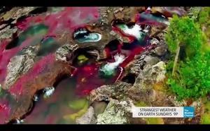 Caño Cristales: najpiękniejsza rzeka na świecie