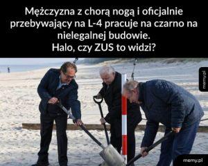Halo ZUS?