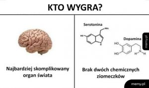 Mózg vs chemiczne ziomeczki