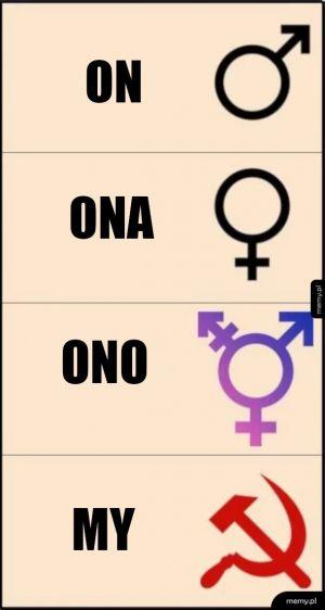 Genderyzm na dziś