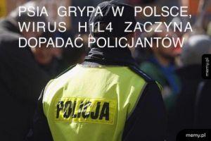 L4 policjantów