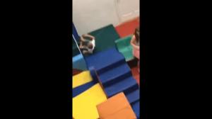 Zabawa z dziećmi