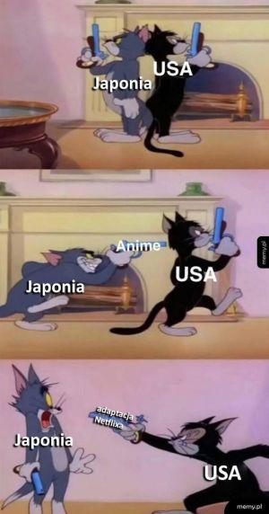 Japonia vs USA