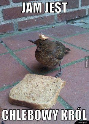Chlebowy król
