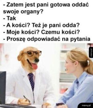 Podejrzany doktor