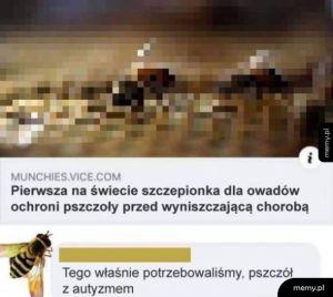 Autystyczne pszczoły