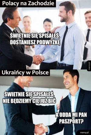 Polacy vs Ukraińcy