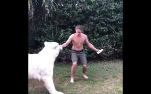 Karmienie głodnych tygrysów