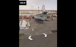 Dobry piesek goni samochód Google Earth