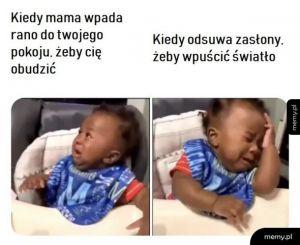 Mamoo