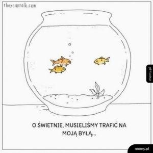 A to peszek