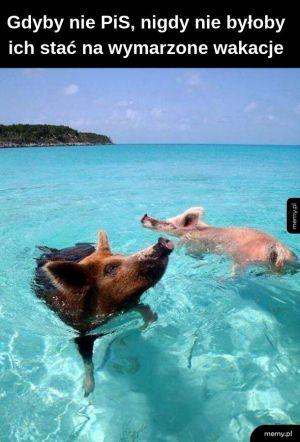 Zasłużone wakacje