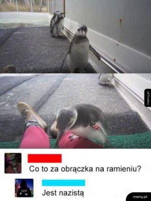 Nazi pingwin