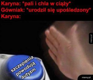 Logika Karyn