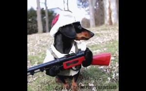 Uzbrojony i niebezpieczny