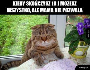 No sory