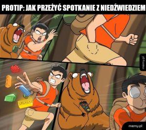 Nie prowokujcie niedźwiedzi żeby to sprawdzić