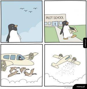 Szkoła latania