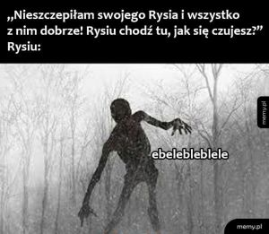Rysiu