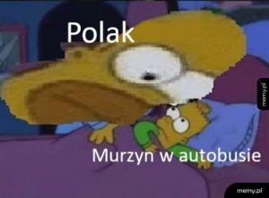 Polacy tacy są