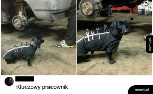 Sumienny pracownik