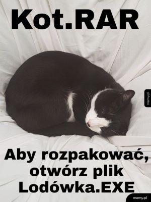 Kotełko