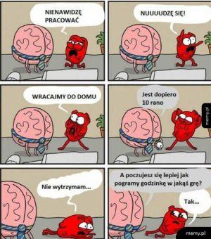 Serce i mózg