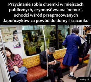Drzemka