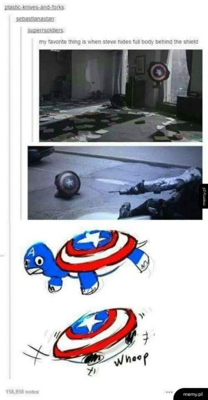Kapitan żółw