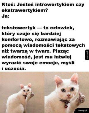 Tekstowertyk