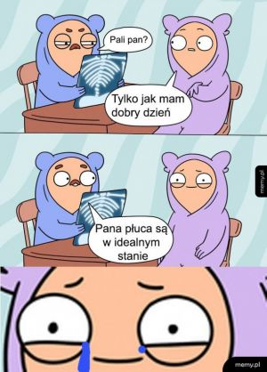 Palacz
