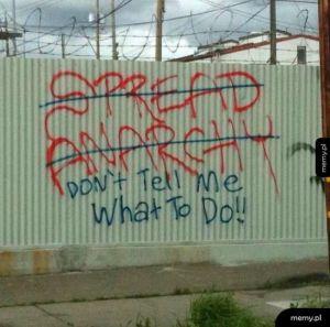 Konsekwentny anarchista