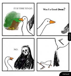 Goose game bez tytułu