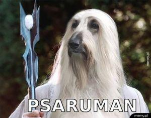 Psaruman