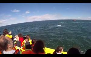 Wieloryb przepływa pod łodzią
