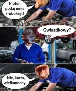 Ciężka praca Pjotera