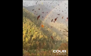 Jesień w Rosji