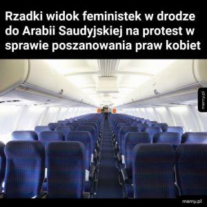 Feminizm tak bardzo...