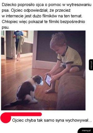 Tresowanie psa