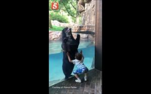 Niedźwiedź i dziecko