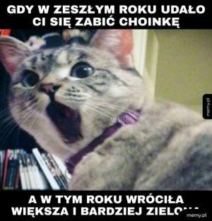 Choojanka...