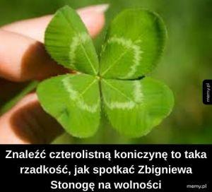 Wielkie szczęście!