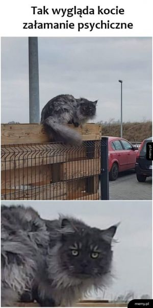 Koteł na skraju załamania